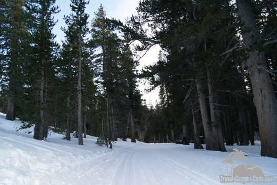 Inyo National Forest Campground Photos