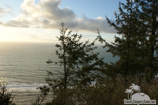 Redwood National Forest Oceanfront