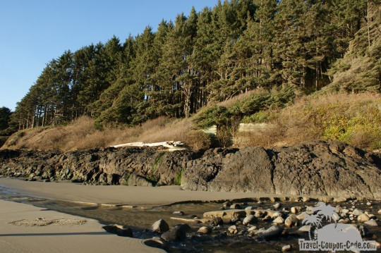 Ecola State Park Picture